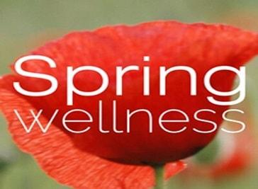 Spring Wellness in Leiden